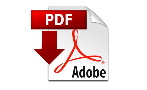 pdf-icon-copy-min1